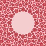 春天在桃红色背景隔绝的开花花 免版税库存图片