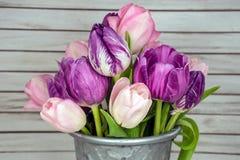 春天在桶的郁金香束 库存照片