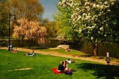 春天在波士顿Publik庭院里 免版税库存图片