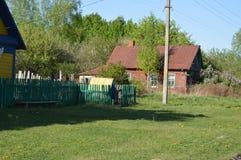 春天在白俄罗斯语村庄 春天 草 免版税库存图片