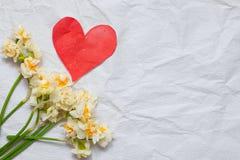 春天在白色工艺纸背景的黄水仙bouqet和 免版税库存照片