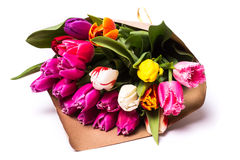 春天在纸包裹的郁金香花花束  图库摄影