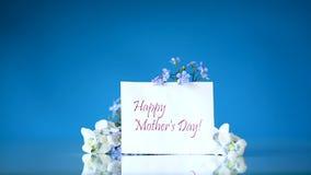 春天在蓝色隔绝的小白色和蓝色花 影视素材