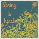 春天在这里!! 库存照片