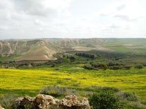 春天在阿尔及利亚 免版税库存图片