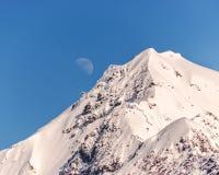 春天在阿拉斯加原野,蓝天,月亮 库存照片