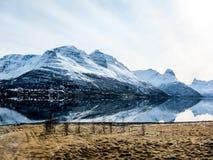 春天在Lyngen阿尔卑斯,挪威 库存照片
