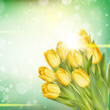 春天复活节背景 10 eps 免版税库存照片