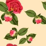春天夏天绽放 美好的背景开花的减速火箭的花 花桃红色红色 花卉巴落克式样 向量例证