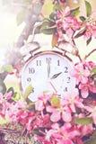 春天夏令时时间 库存图片