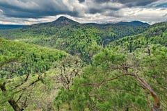春天多云天时间的山森林 图库摄影