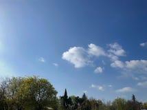 春天天气,晴朗的天空,开花的树在村庄 库存照片