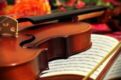 春天小提琴 库存照片
