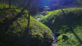 春天小河和太阳 影视素材