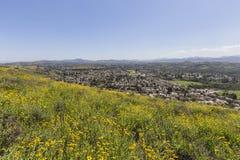 春天山坡在绍森欧克斯加利福尼亚 免版税库存图片