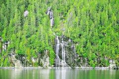 春天山森林和瀑布 库存图片