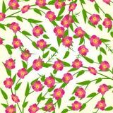 春天开花传染媒介例证 库存图片