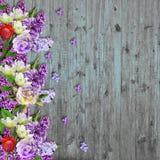 春天开花在葡萄酒木背景的边界 图库摄影