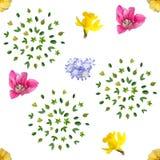 春天开花无缝的背景样式 免版税库存照片