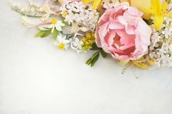 春天开花的桃红色郁金香和春天花 库存图片