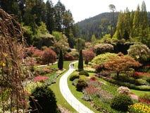春天开花的花在Butchart庭院里 免版税库存图片