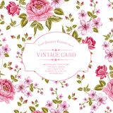 春天开花葡萄酒卡片的花束。 免版税库存照片
