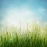 春天或夏天抽象季节本质背景 免版税库存照片