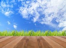 春天或夏天抽象自然背景和木地板 库存照片