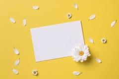 春天或夏天背景与拷贝空间文本的 免版税库存图片