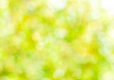 春天抽象背景,被弄脏的太阳轻的bokeh 免版税库存图片