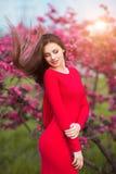 春天接触 红色礼服的愉快的美丽的少妇享受新桃红色花和太阳光在开花公园在日落 免版税图库摄影
