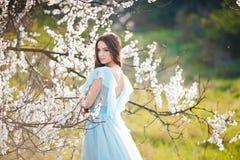 春天接触 蓝色礼服的愉快的美丽的少妇享受鲜花和太阳光在开花公园在日落 免版税库存照片