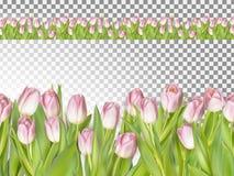 春天无缝的边界背景 10 eps 免版税库存照片
