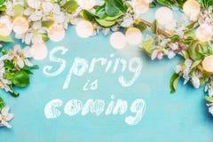 春天是以后的文本,春天有bokehlighting的开花枝杈在蓝色绿松石背景,顶视图,边界 春天 库存照片