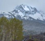 春天暴风雪在科罗拉多西部 免版税库存照片