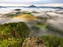 春天有薄雾的风景 在自然公园美丽的小山的早晨  免版税库存照片