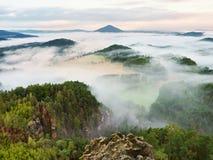 春天有薄雾的风景 在自然公园美丽的小山的早晨  免版税库存图片