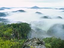 春天有薄雾的风景 在自然公园美丽的小山的早晨  免版税图库摄影