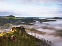 春天有薄雾的风景 在自然公园美丽的小山的早晨  库存照片
