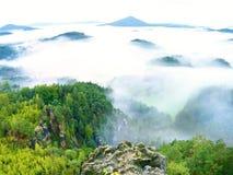 春天有薄雾的风景 在自然公园美丽的小山的早晨  图库摄影