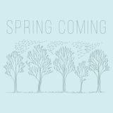 春天树剪影 库存照片