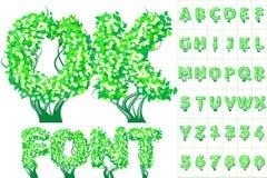 春天树字母表 免版税库存照片