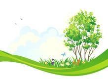 春天树背景 图库摄影