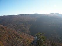 春天森林在克里米亚半岛山的早晨 库存照片