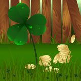 春天植物fhree生叶与露水的三叶草和金黄硬币与绿草和木庭院篱芭背景 圣帕特里克` s 库存图片