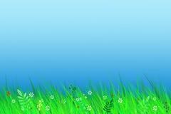 春天横向 免版税库存图片