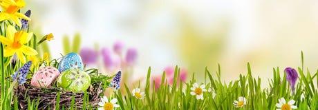 春天横幅用复活节彩蛋 库存图片