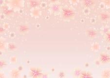 春天樱花 春天桃红色花背景 库存图片