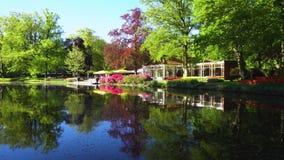 春天池塘在公园 股票视频