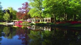 春天池塘在公园 股票录像